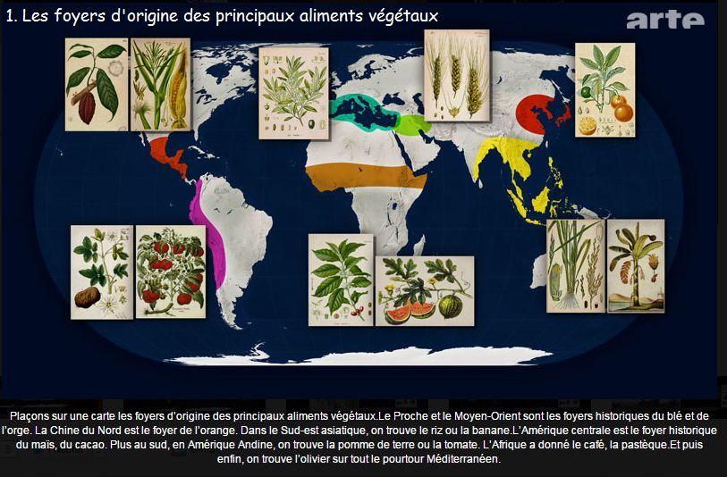 1 origine des aliments